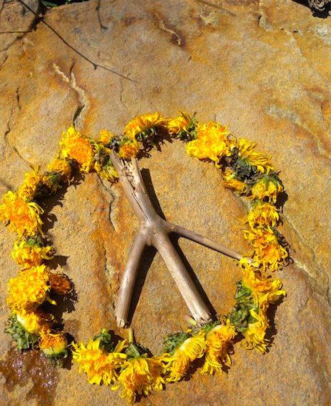 International Day Of Peace 7 Quotes To Inspire You