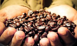 Article: Climate Change Could Cut World's Coffee Supply in Half
