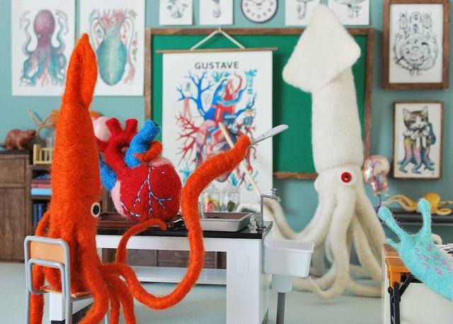 Anatomy classroom with squids