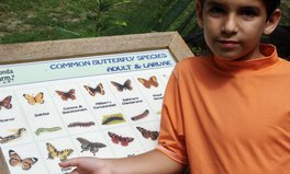 Article: This High School Student Has Been Saving Butterflies Since He Was 5