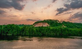 Artículo: Amazon Deforestation Could Affect Global Water Availability