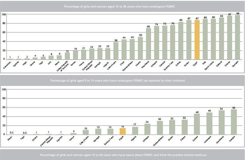 FGM-Egypt-Doctor-Jail-Arrested-BODY-Egypt's FGM rate comparison.JPG