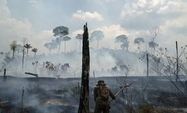 Article: Brazilian Children Face Increased Respiratory Illnesses Due to Amazon Fires: Study