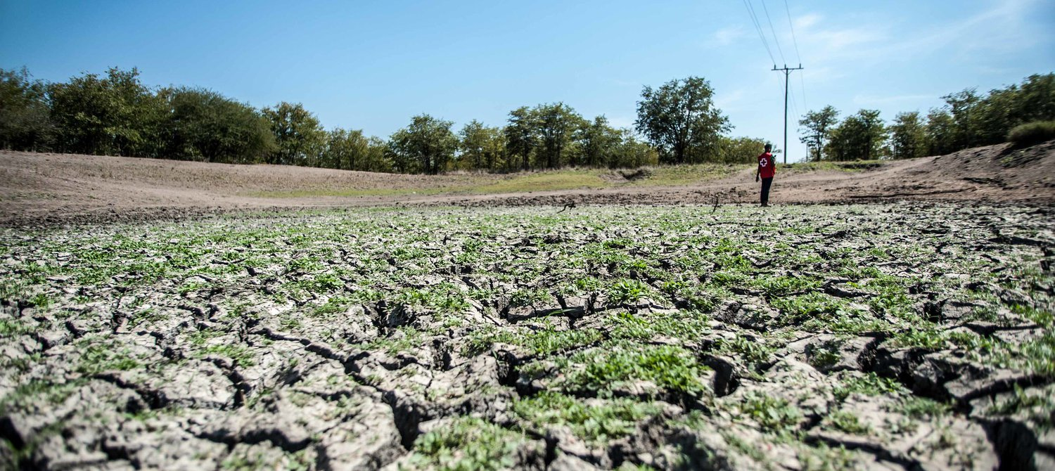 45 Million Face Critical Food Shortages in Southern Africa, UN Warns