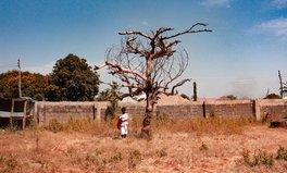 Artikel: Welthunger-Index 2020: Den Hunger weltweit bis 2030 zu beenden, ist unerreichbar geworden