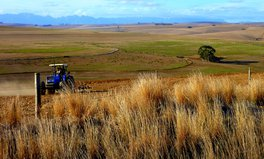 Article: South Africa's Government Will Spend Millions on Supporting Women and Youth Farmers