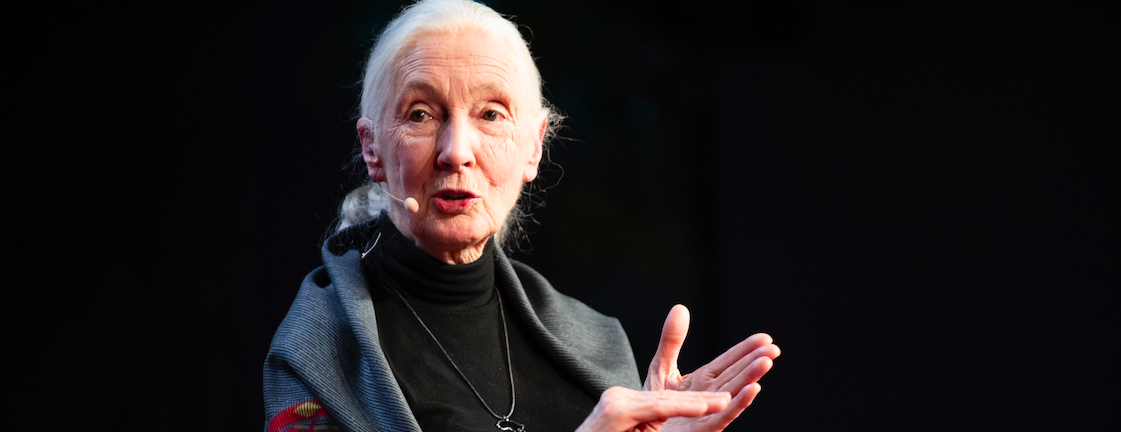 9 Quotes From Jane Goodall's Australian Tour That Will Give You Hope for the Future