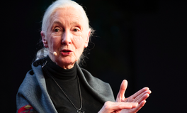 Article: 9 Quotes From Jane Goodall's Australian Tour That Will Give You Hope for the Future