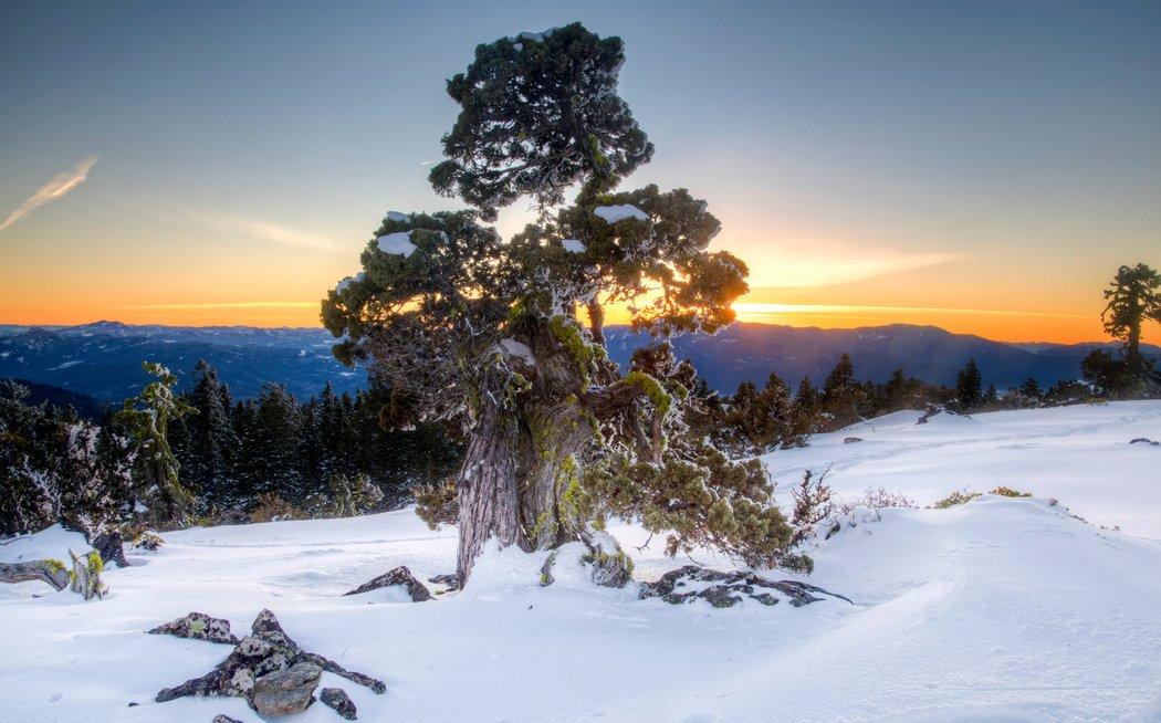 The Cascade-Siskiyou National Monument.jpg