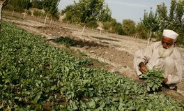 Article: Arms and agriculture—growing food in conflict zones