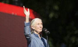 Article: 10 Jane Goodall Quotes to Celebrate the Environmental Leader's Birthday