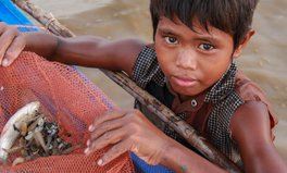 Article: The faces of child labour
