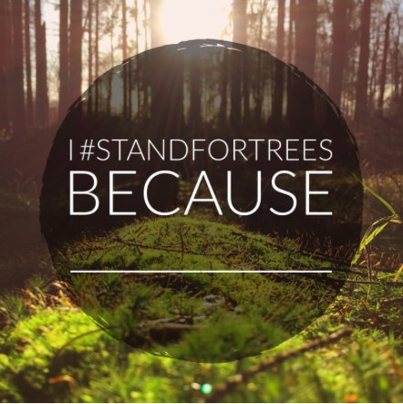 #StandForTrees.jpg