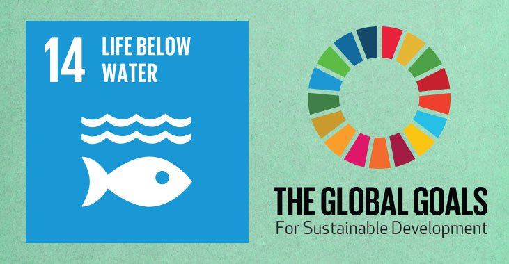 global-goals-14-life-above-water.jpg