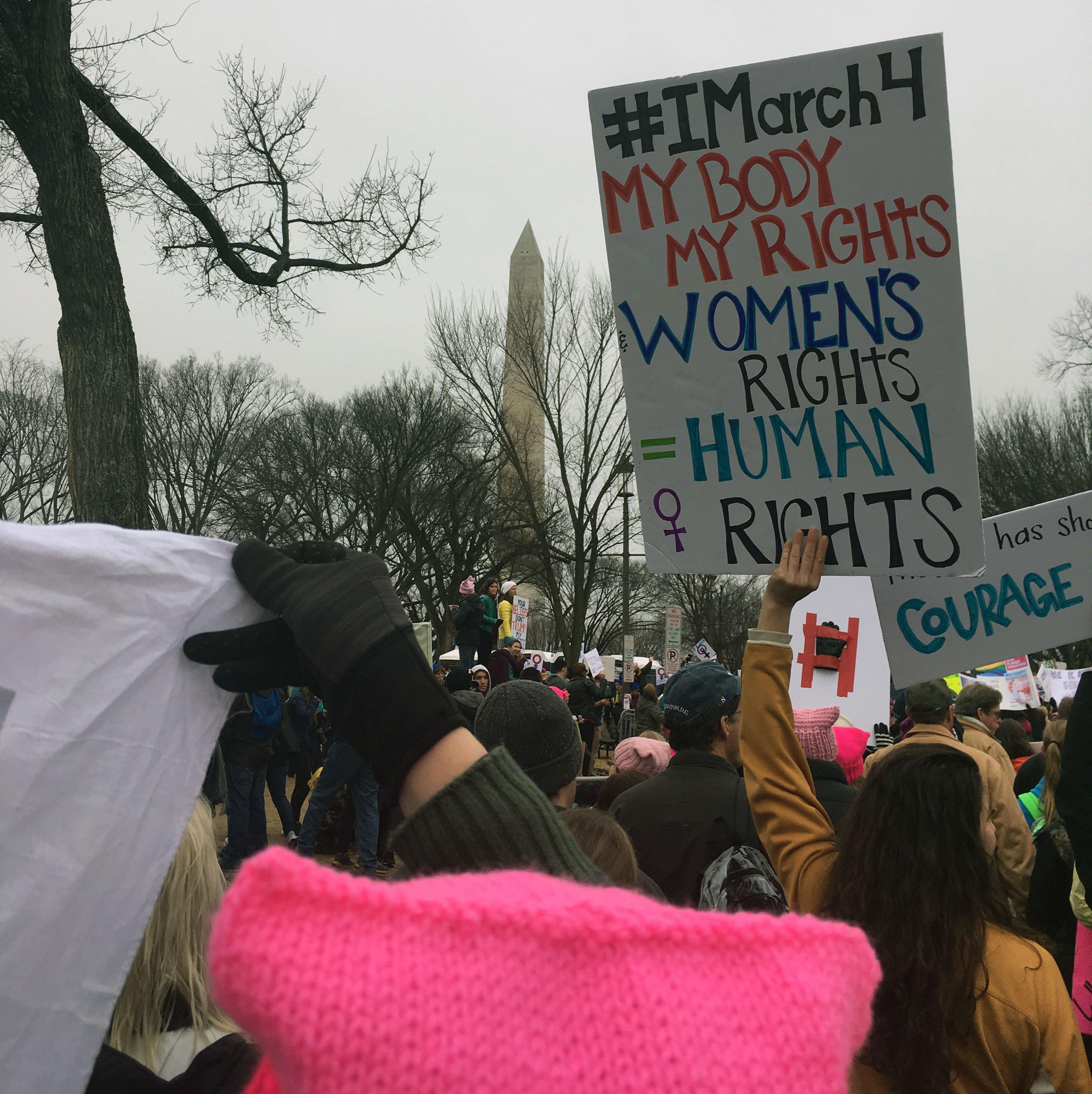 dc_march_signs_meghan_werft.jpg