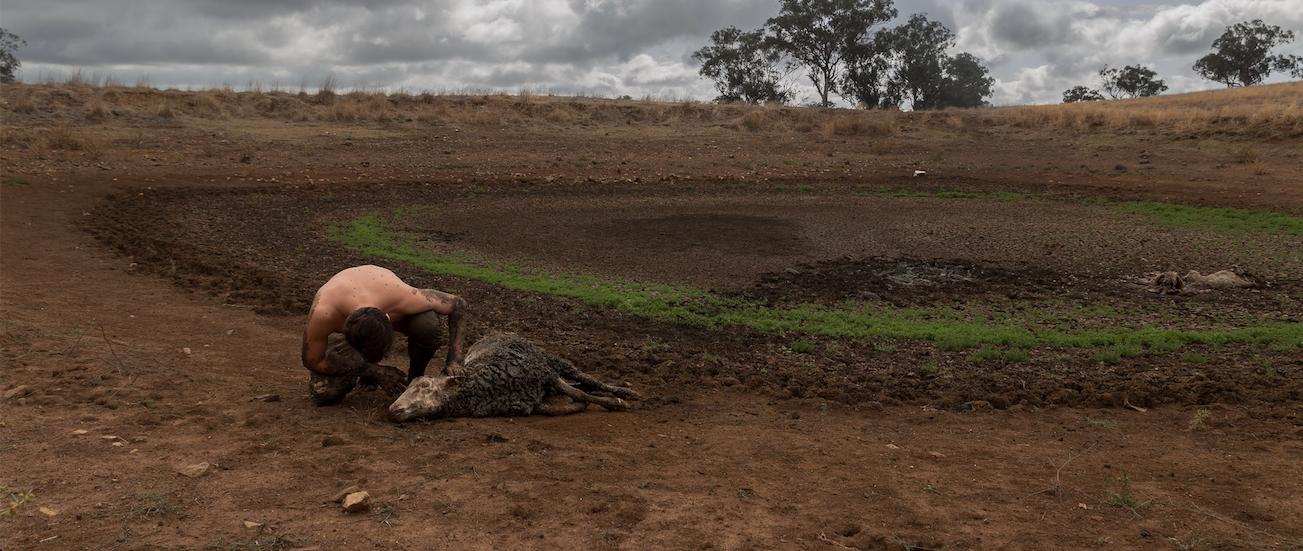 Australian Medical Association Declares Climate Change a 'Health Emergency'