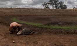 Article: Australian Medical Association Declares Climate Change a 'Health Emergency'