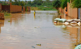 Article: Floods in Niger Displace 23,000 People in Less Than a Month