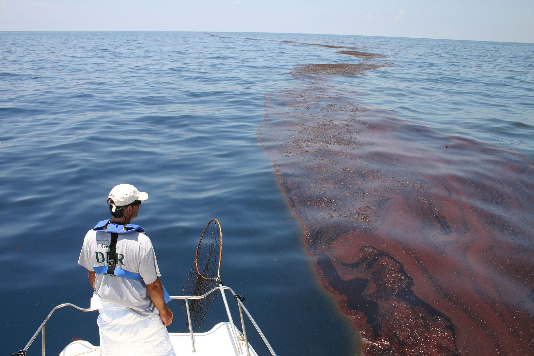 BP Deepwater Horizon Oil Spill NOAA.jpg