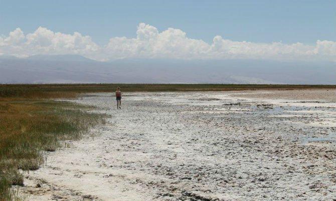 Atacama 6.jpg
