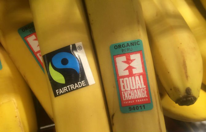 ethical-banana-b2.jpg