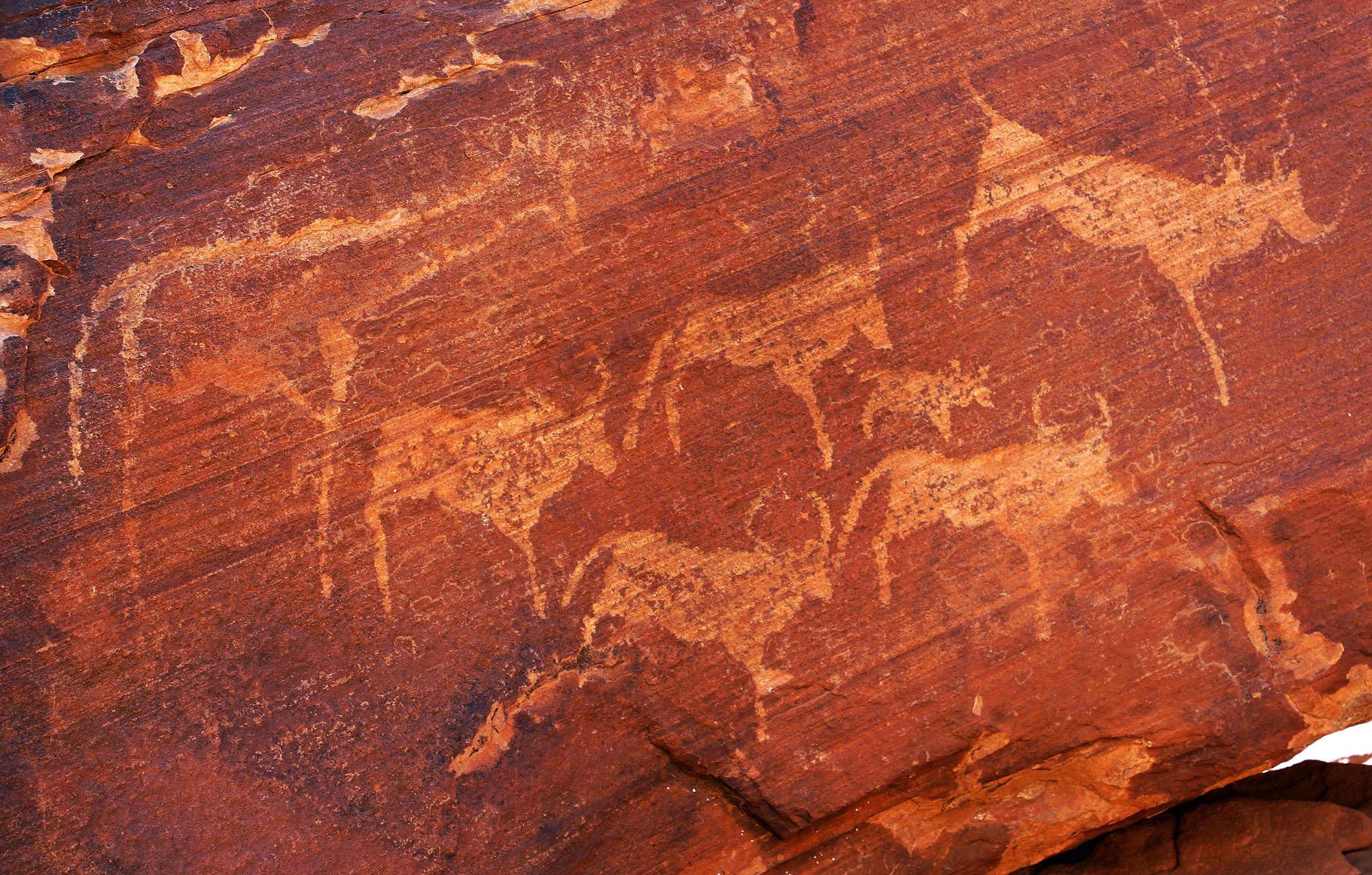 Rock Art at Twyfelfontein, Namibia.jpg