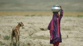 ap_0307090787_afghanistan_girl_goat.jpg__268x149_q85_crop_subsampling-2.jpg