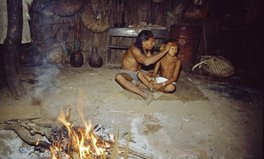 Article: Gold Miners Are Being Investigated for Brutal Killing of Indigenous Tribe in Amazon