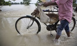 Article: 8 Photos of the Deadly Monsoon Rains That Struck South Asia