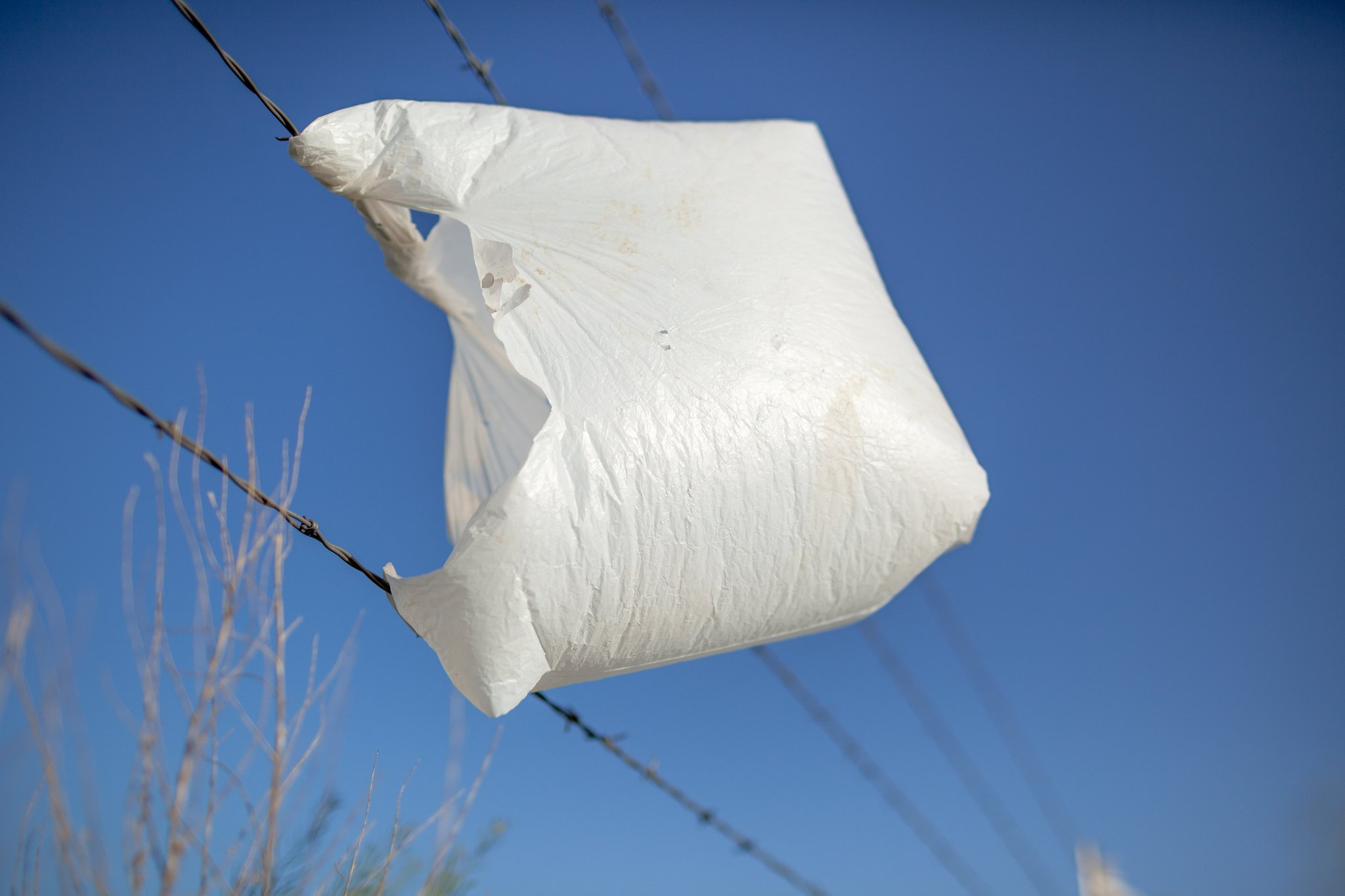 Plastic bag 1.jpg