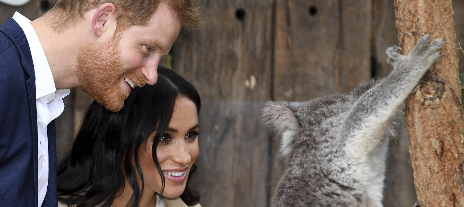 Meghan and Harry Highlight 'Lesser-Known' Charities Working to Achieve the Global Goals