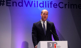 Article: Prince William Is Leading 30 World Banks to Crack Down on the Illegal Wildlife Trade