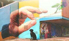 Artikel: sao paulo hunde duerfen in Obdachloseneinrichtung schlafen