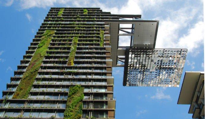 Seeds in the city- Flickr- Rob Deutscher- Body 1.jpg