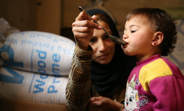 Article: GOOD NEWS: New funding means food assistance to Syrians can be fully reinstated