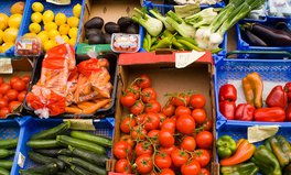 Article: The EU Is Making Big Strides to Reduce Food Waste