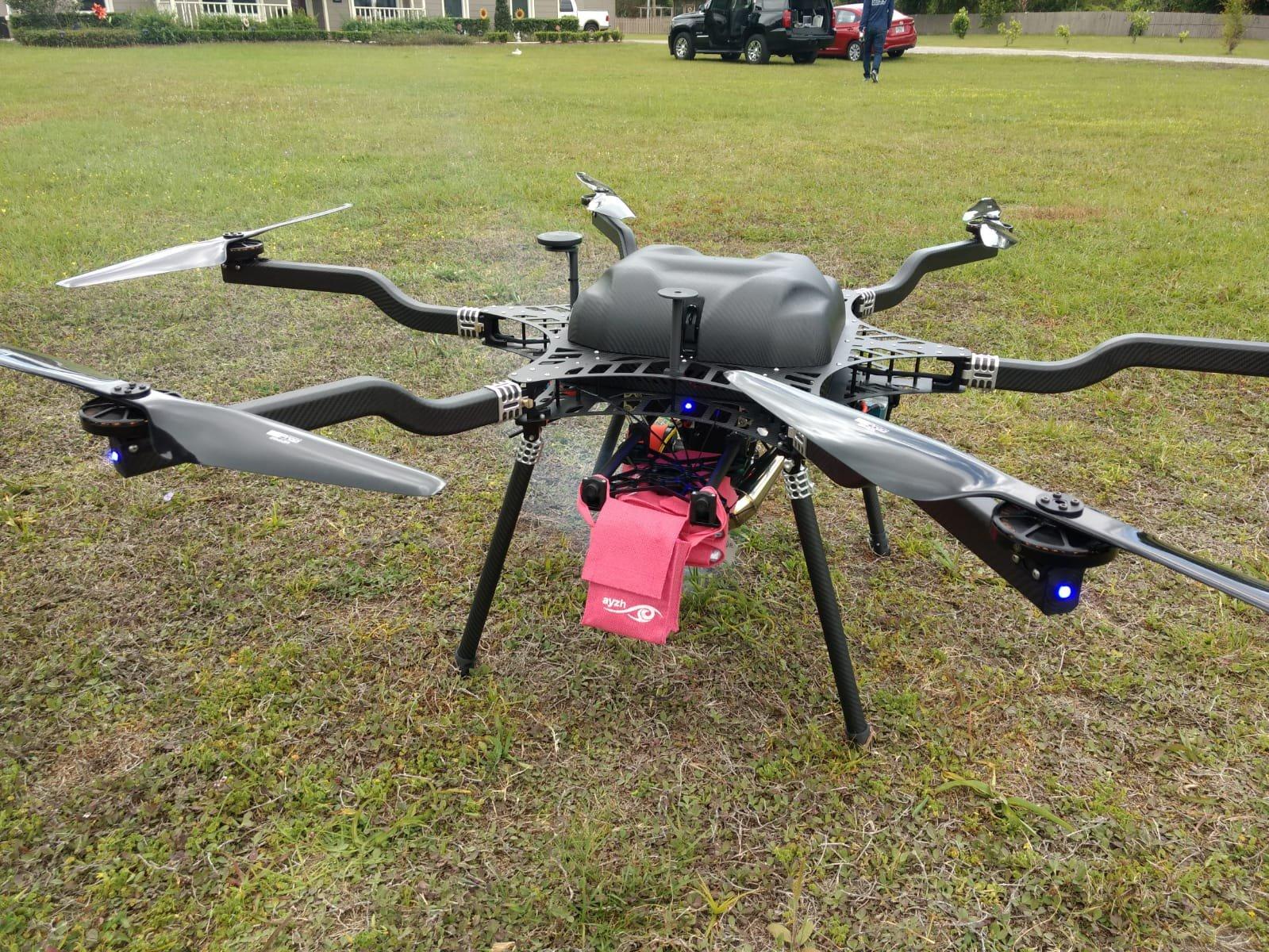 Drone Mamabird.JPG