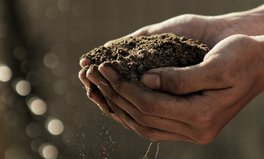 Artículo: The Key to Ending World Hunger? Healthy Soil, UN Says