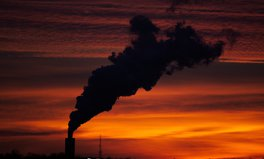 Article: Air Pollution Harms Every Part of Your Body, Research Shows
