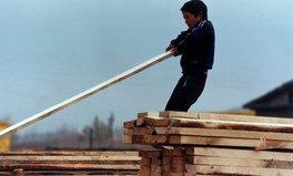 Article: Nearly Half the World's 152 Million Child Laborers Do Hazardous Work
