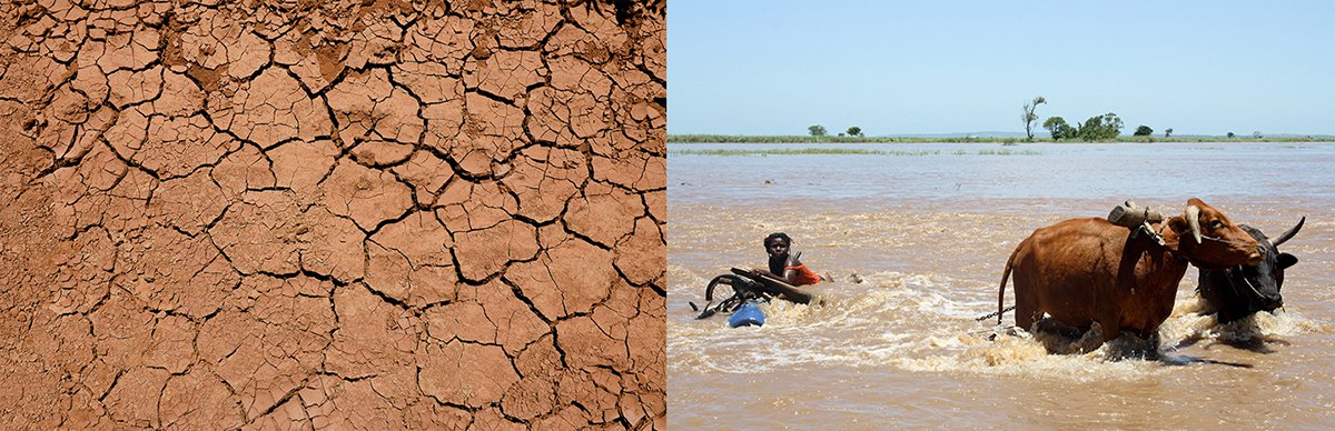 Blog Photo_Dry and Flooded Land.jpg