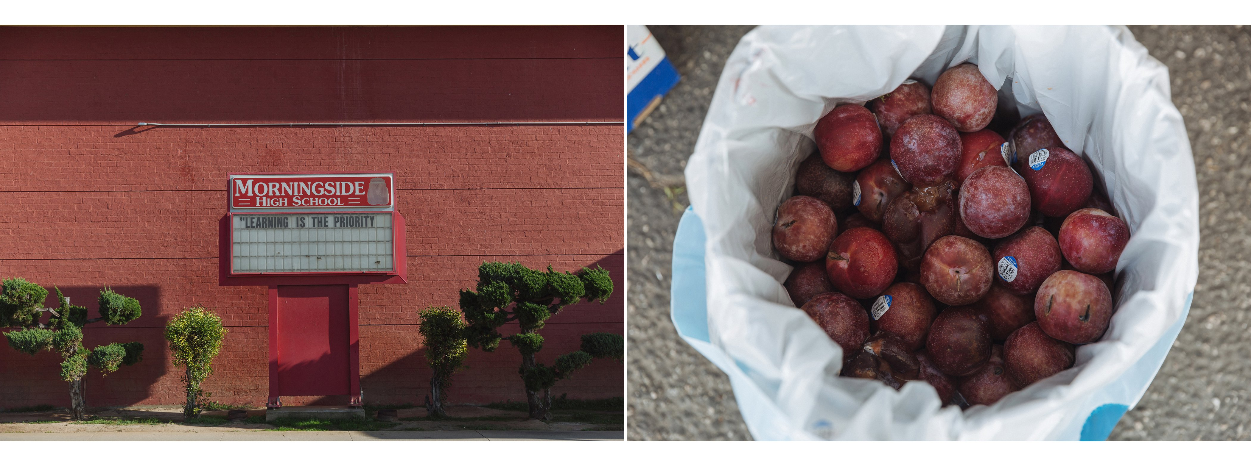 globalcitizenFoodInsecurity_kaylareeferphoto-diptych-SJLI-Edit.jpg