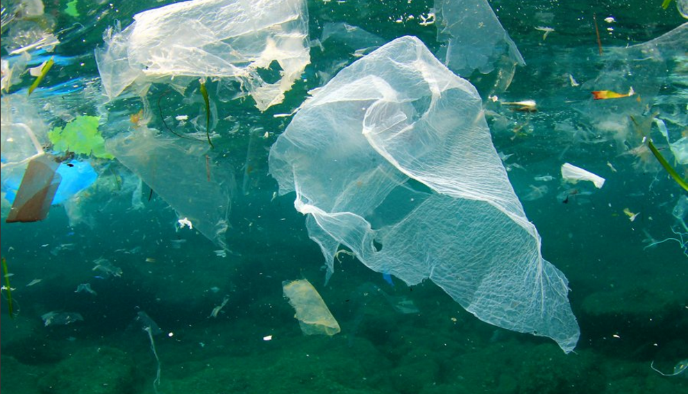 Number Of Plastic Bags Found On UK Beaches Nearly Halves In Just - Number of oceans