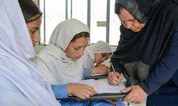 Essay: Gender Roles in Education