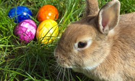 Article: Easter celebrations around the world
