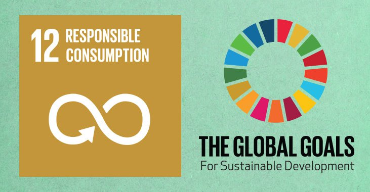 global-goals-12-responsible-consumption-b12.jpg