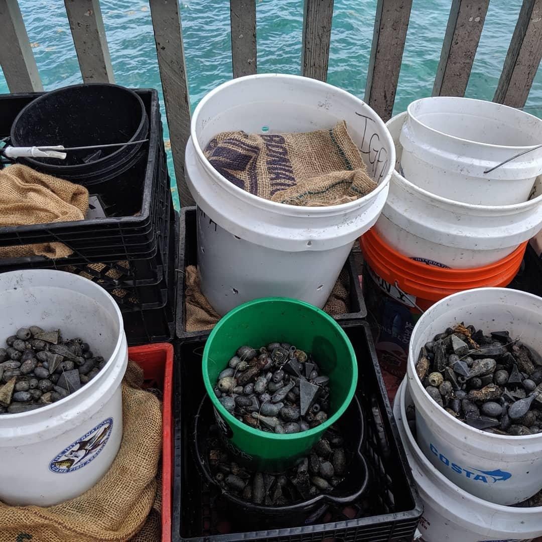 florida-weltrekord-plastikmüll-aufräumaktion-meeresschutz-global-citizen.jpg
