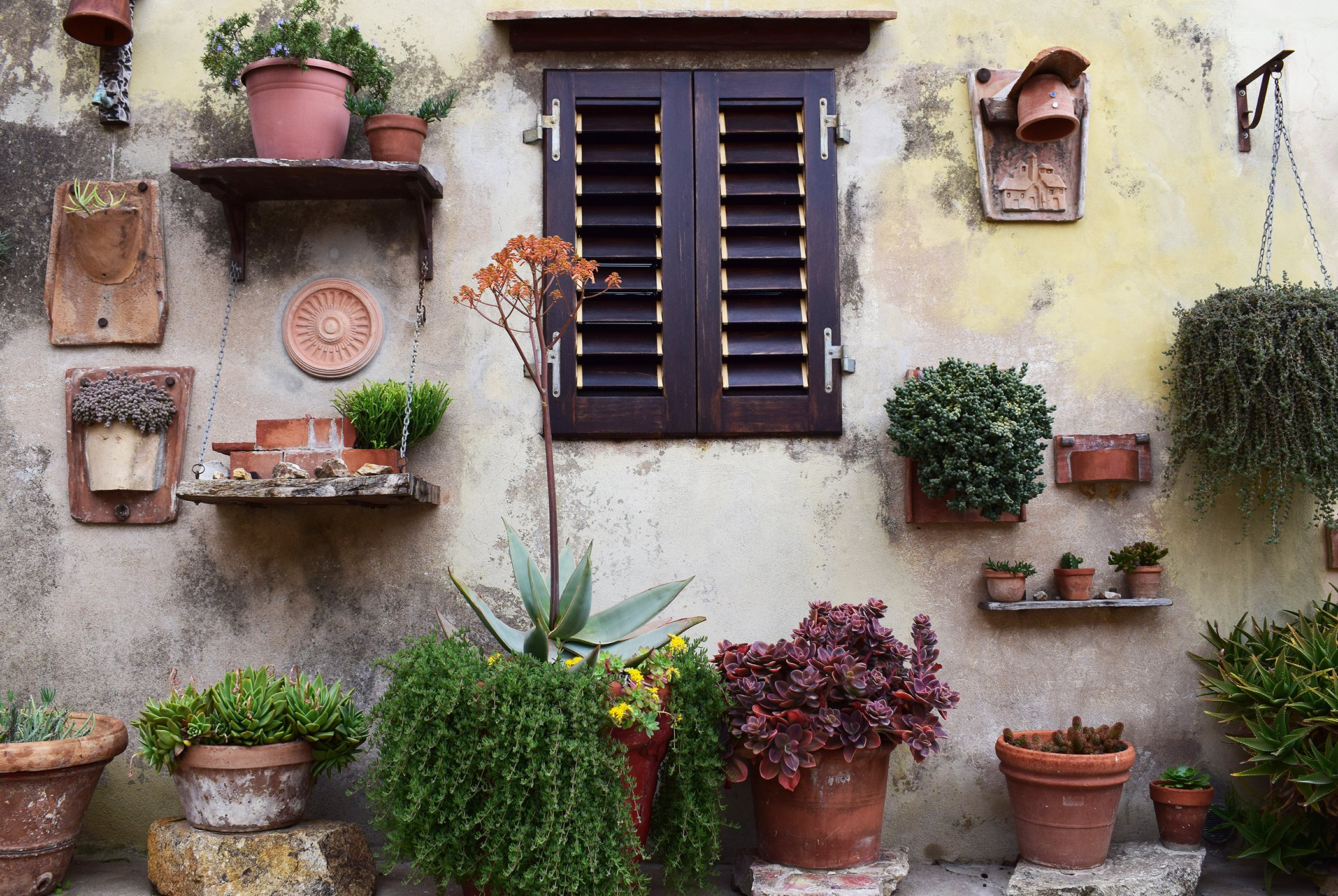 Wall-Garden.jpg