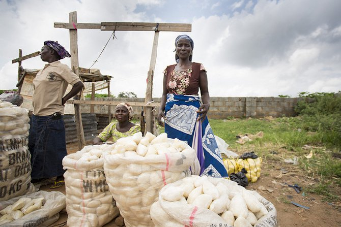 women in agriculture - flickr - IFPRI images - body5.jpg