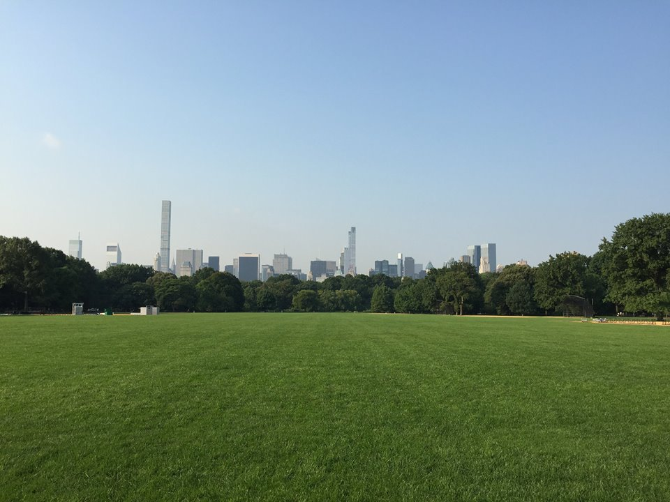 Central Park Great Lawn.jpg